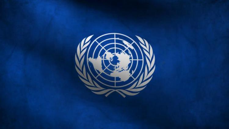 ООН впервые включила в статистику населения РФ жителей Севастополя и Крыма