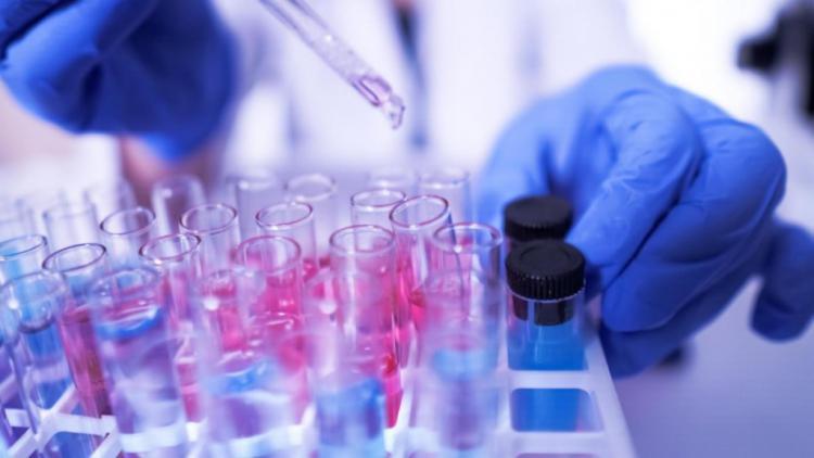 Восемь тысяч учителей обязали пройти тест на коронавирус в Севастополе
