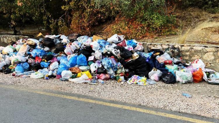 Экологическая катастрофа - заповедник Ласпи завален мусором