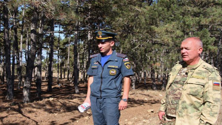 Спасатели Севастополя проверяют леса