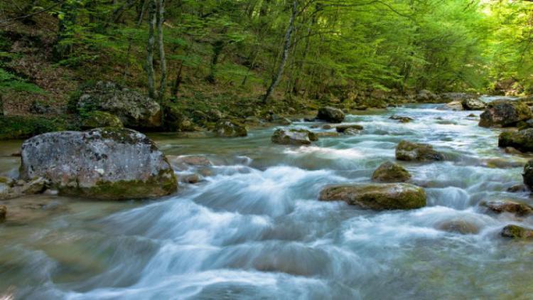 Правительство Севастополя презентуют проект переброски воды из реки Коккозка