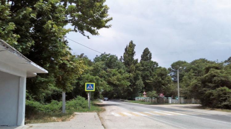 Департаменты горхозяйства и транспорта Севастополя отчитались о выполнении поручений правительства города
