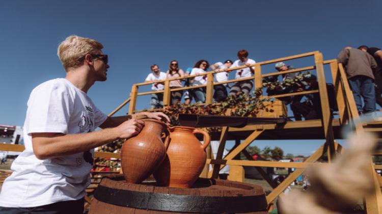 WineFest 2020: на виноградниках в Севастополе отпразднуют юбилей