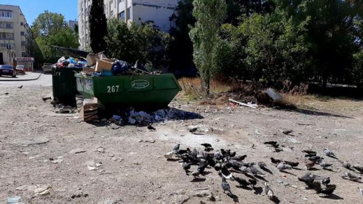 В Севастополе жалуются на горы мусора и разбитые дороги