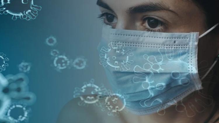 В Севастополе зарегистрированы 26 новых случаев заражения коронавирусом