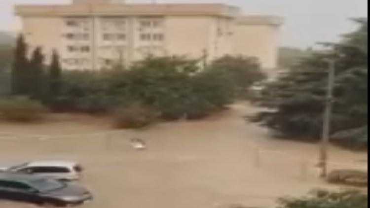 Мужчина помог пожилой женщине во время локального наводнения в Севастополе