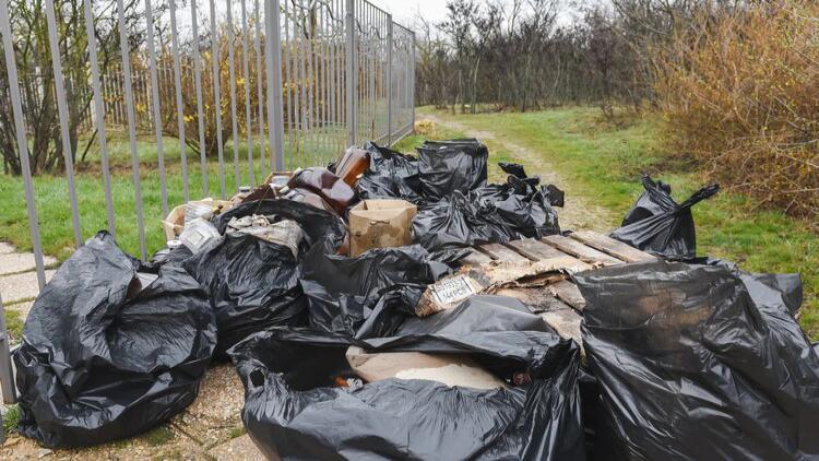 Десять грузовиков мусора вывезли после субботника в парке детской больницы Севастополя